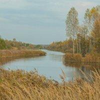Пейзаж с водой. :: Владимир Безгрешнов
