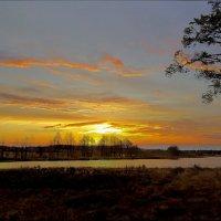 Закат полоской золотою Прорвал завесу тёмных туч.Заворожённым красотою,Нам солнце шлёт последний луч :: Алла Кочергина