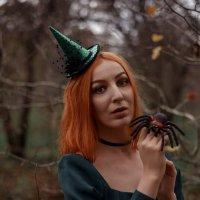 Ведьмочки... :: Зинаида Манушкина