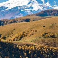 Осень в горах :: Наталия Л.