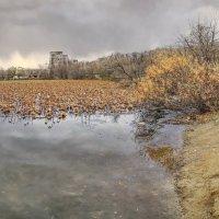 Озеро лотосов :: Эдуард Куклин