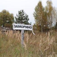 Заморино. Указатель. :: Сергей Якуцени