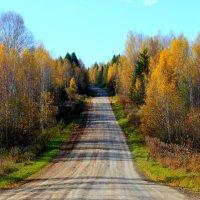 Золотая осень :: Любовь Чащухина
