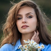 Ромашки... :: Наталья Соболева