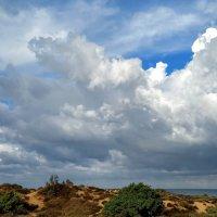 После дождя :: Ефим Журбин