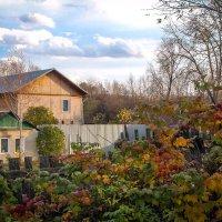Уютненько так с разноцветной осенью!..) :: Надежда