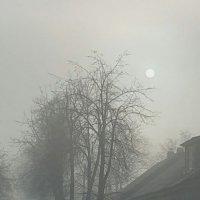 Туман :: Artur Pauris