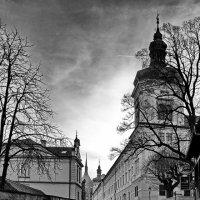 КУТНА ГОРА. Чехия. :: Виталий Половинко