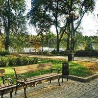 Осень в парке :: Валерий Тарасов