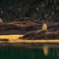 Там, за дальним озером... :: Валентина Кобзева