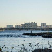 Санкт Петербург, набережная Невы, ноябрь :: VL