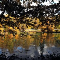 Осенний пейзаж #2 :: Михаил Малец