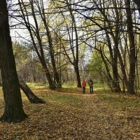 Прогулка в осеннем парке :: Gera
