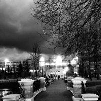 Ночь в парке :: Ксения Черных
