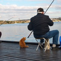 На рыбалке :: Алексей Михалев