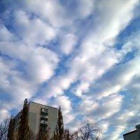 Облака над городом :: Марина Кушнарева