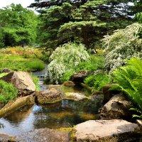 Японский сад в Ботаническом. :: Валерий Пославский