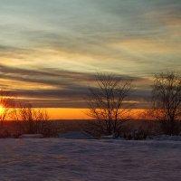 Ноябрь, вечер, закат :: Дмитрий Печенкин
