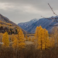 осень в Горном... :: Николай Мальцев