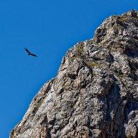В горах Карачаево-Черкесии :: Дмитрий Емельянов