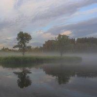 Летние туманы :: галина северинова