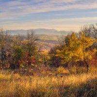 Краски осени :: Геннадий Клевцов