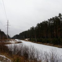 Первый снег :: Игорь Чуев