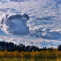 Сказочные облака. :: Тамара Бучарская