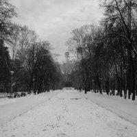 Дорога уходит в даль. :: Радмир Арсеньев