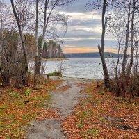 Осенние прогулки на Чусовое озеро 3. :: Пётр Сесекин