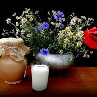 Ах, эти цветы полевые...И стакан парного молока! :: TAMARA111777