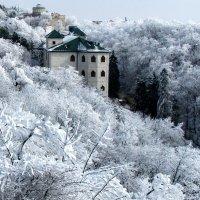 В объятиях зимы. :: игорь кио