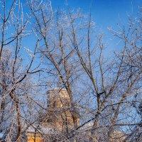Зимний день в Каменске :: Дмитрий Костоусов