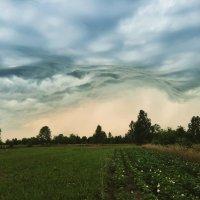 Небо перед грозой :: Мария Гуськова