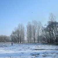"""""""В зимовий сонячно-морозний день на лузі біля Старого Вишнівця"""" :: Ростислав Кухарук"""
