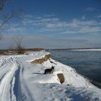 Впереди зима :: Anna Ivanova