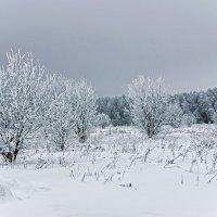 После снегопада :: Влад Чуев