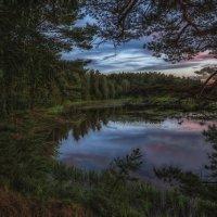 Вечерний пейзаж :: Serge Riazanov