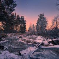 Будет день морозный ... :: Roman Lunin