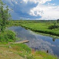 Река Маньга. :: ИРЭН@ .
