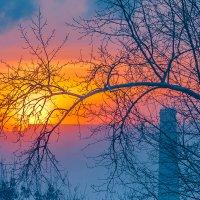 Мороз рисует красками... :: Виктор Садырин