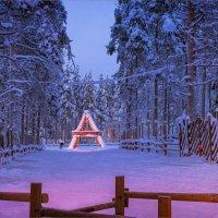 С наступающим Новым годом! :: Shapiro Svetlana
