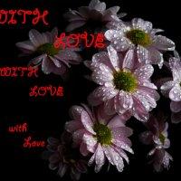 Цветы :: Victoria