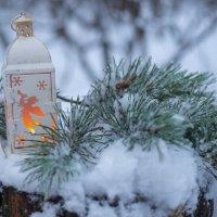 зимний лес :: Nara Nakhshkarian