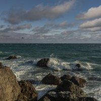 Чёрное море в январе :: Александр Пушкарёв