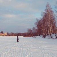 Лыжные прогулки :: BioJ .