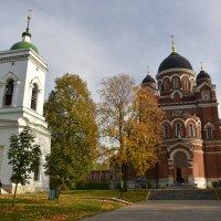Спасо-Бородинский монастырь. :: tatiana