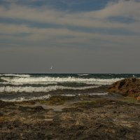 Море волнует и манит... :: Александр Пушкарёв