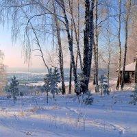 Зима в разгаре :: Вера Андреева