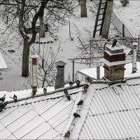 Холода, холода.. :: Юрий Васильев